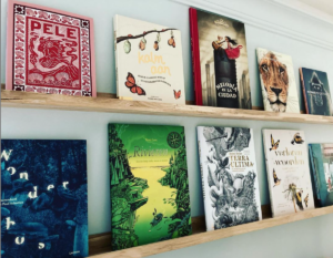 Galerie van kinderboeken